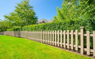 Забор между участками. Высота забора между соседними участками.