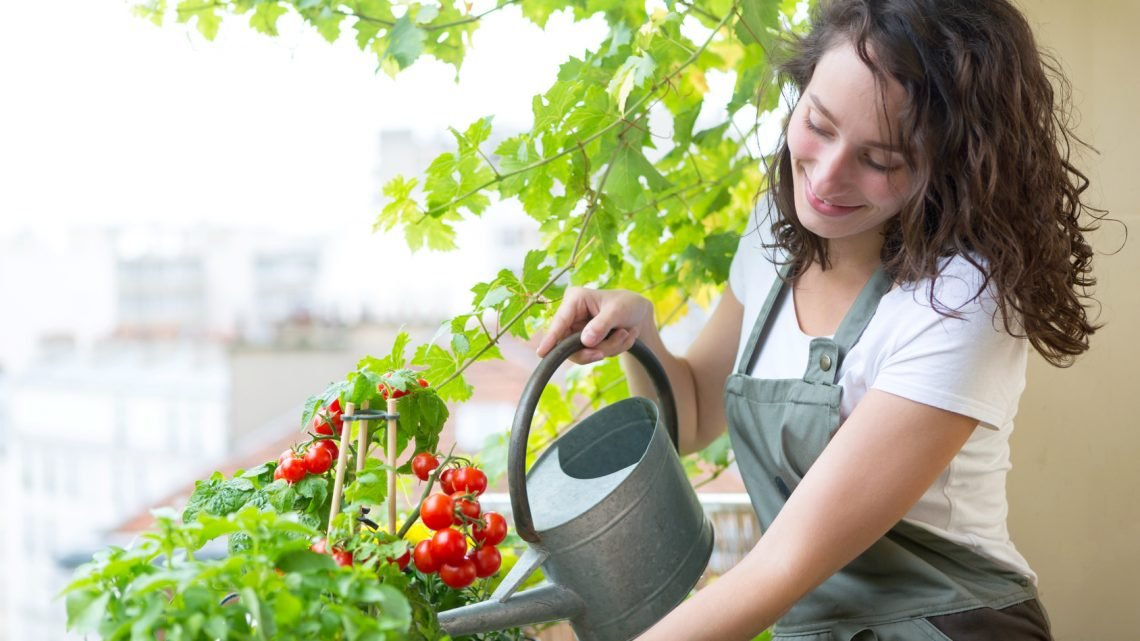 Как организовать домашний сад на своем балконе