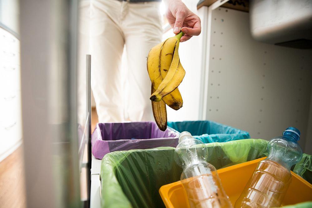 Разделение мусора. Цвета мешков для разделения бытовых отходов