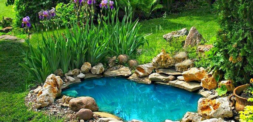 Садовый пруд – как сделать шаг за шагом?