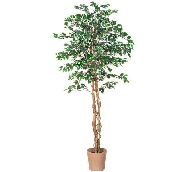 искусственное дерево олива